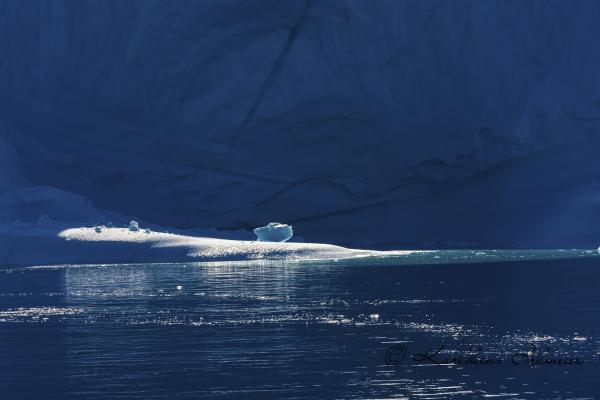 Light on Iceberg, Scoresby Sund